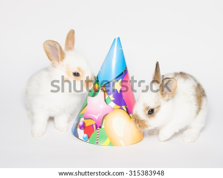 Happy Birthday Card With Two Funny Rabbits And Party Hat