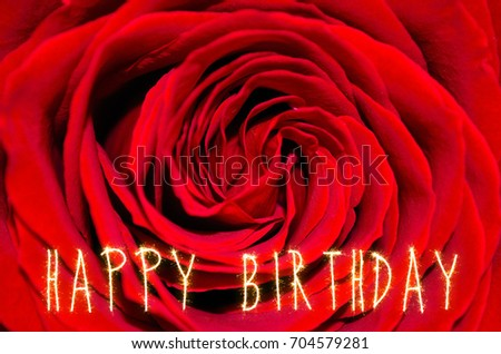 Happy Birthday Greeting Card Red Rose Stock Photo Edit Now