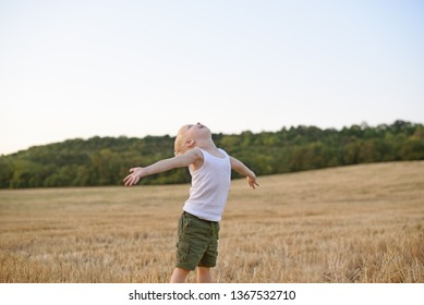 Happy blond boy stands with his arms apart and head up in a mowed wheat field. Sunset time.
