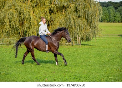 happy, blonde girl riding black horse in a green field in Gallopp and canter without saddle and bridle building trust between horse and rider with natural horsemanship and free dressage exercises