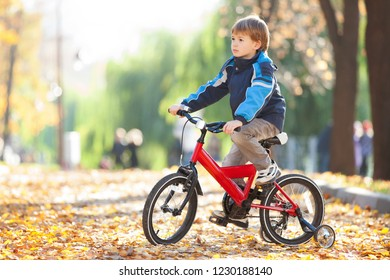 Happy boy with bicycle in the autumn park. Beauty nature scene with colorful foliage background, yellow trees and leaves at fall season. Autumn outdoor lifestyle. Boy  having fun on fall leaves