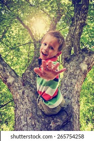 a happy boy climbing a tree during summer time with his hand out toned with a retro vintage instagram effect app or action