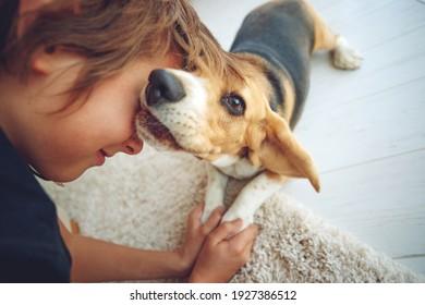 Glücklicher Junge und Hund Beagle umarmt sie mit Zärtlichkeit, lächelt, schaut die Kamera zu Hause an. Haustiere. Gefühle von Menschen. Kindheit. Lebensstil. Tierpflege. Hochwertiges Foto.