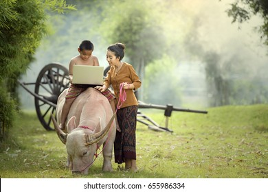 Happy boy and older sister using a laptop outdoors On the buffalo