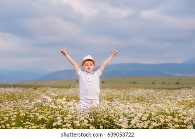 Happy boy on the field of chamomiles