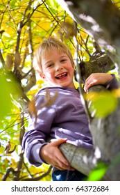 happy boy on the tree
