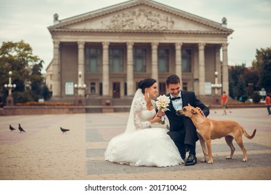 Happy bride and groom and a cute little dog