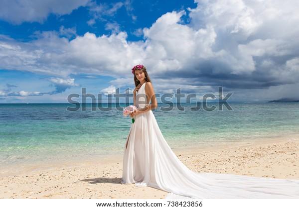 Happy Bride White Wedding Dress Big Stock Photo Edit Now 738423856