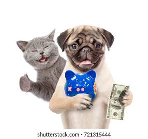 Happy cat and funny puppy with piggy bank and dollar in the paws. isolated on white background