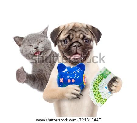 Happy Cat Funny Puppy Piggy Bank Stock Photo Edit Now 721315447