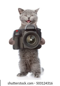 Happy cat photographer taking pictures. isolated on white background.
