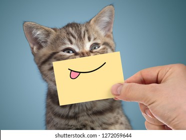 happy cat portrait with funny smile and tongue