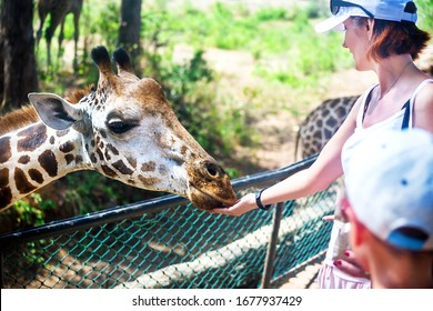 Happy caucasian mother and son feeding giraffe. Family having fun with animal in the national park. Outdoor.  Wildlife reserve, Kenya, Africa.
