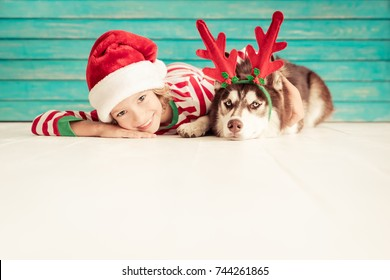 Happy child and dog on Christmas eve. Kid and pet dressed in Santa Claus hat. Girl having fun with husky at home. Chinese calendar new year 2018 concept