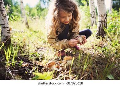 glückliches Mädchen, das auf dem Spaziergang wilde Pilze pflückt, im Sommer oder im Herbstwald