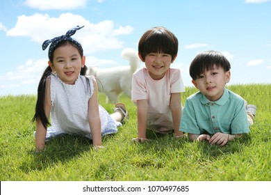 The happy child lay on the grass