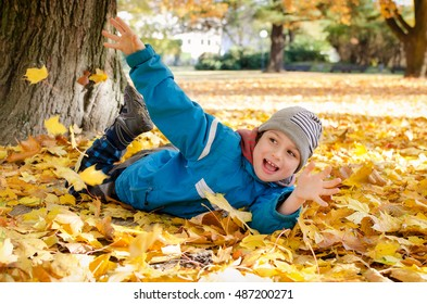 Happy child playing in autumn leaves under a maple tree in park in fall.