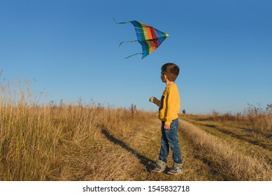 Happy child playing with a kite while running on meadow, sunset, in summer day. Funny time with family. Little boy launch a kite.