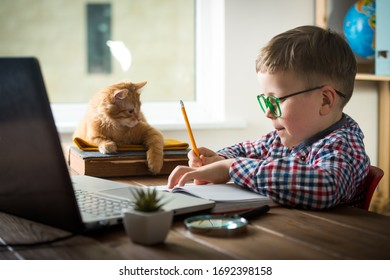 Happy child playing with pet cat while doing homework. Ginger cat fighting for pencil.