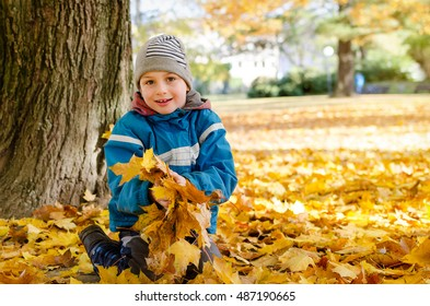 Happy child siting in autumn or fall leaves under a maple tree in park in fall.