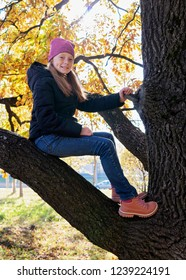 Happy child sitting on branch of big tree on sunny autumn day