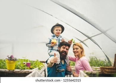 happy childhood. happy childhood concept. happy childhood of little boy with parents. happy childhood in greenhouse. gardeners