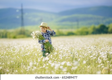 Happy childhood. Cute boy in a hat walks in the field of blossoming chamomile