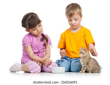 happy children feeding kitten isolated on white