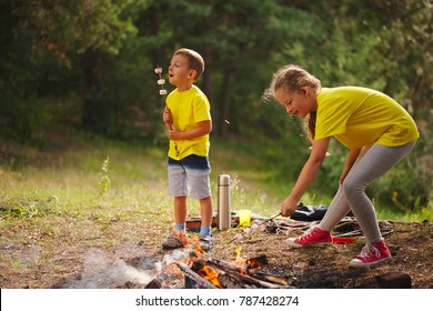 happy children hiking in the forest