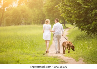 happy couple future parents on the walk with the dog in the Park