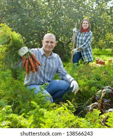 Happy couple  harvesting carrots in field