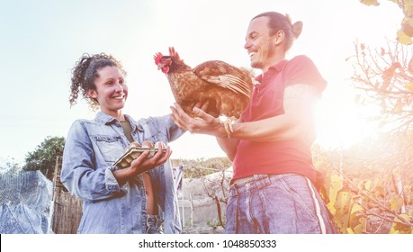 Happy couple picking up fresh organic eggs in henhouse farm at sunset - Young farmers working in summer time - Healthy lifestyle, love, agriculture concept