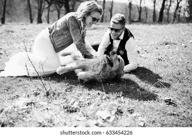 Happy couple plays with funny dog on the lawn