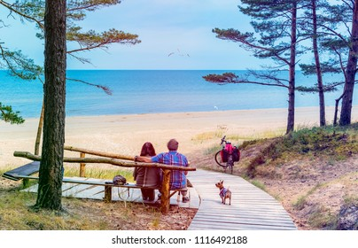 Happy couple of seniors are resting on wooden bench and  looking at the distance on sandy beach of the Baltic Sea
