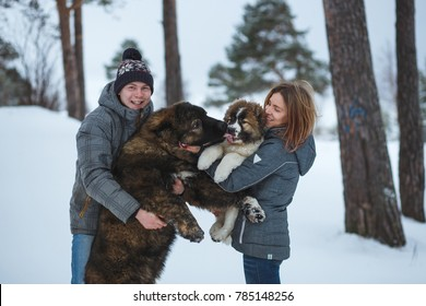 Happy couple with two dogs in winter forest. Lovely moments outdoor holidays.