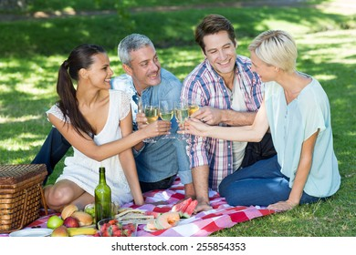 Happy couples toasting at the park on a sunny day