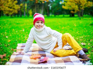 happy cute  boy in the autumn park with green grass and yellow leaves