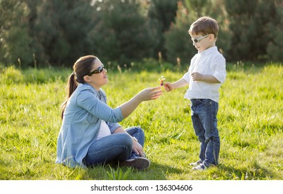 Happy cute son giving a bouquet of flowers to his pregnant mother in a sunny field