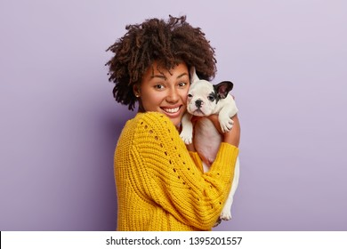 Happy dark skinned woman holds tenderly her small bulldog puppy, makes portrait in studio, has good time with pet, pose on camera, isolated over purple background. Caring about dogs concept.