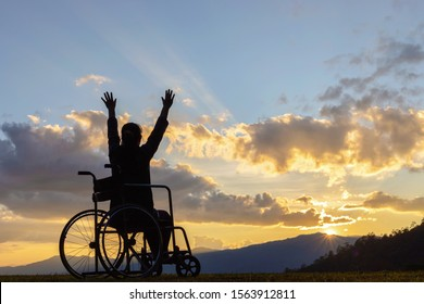 Happy disabled woman in a wheelchair and stretching hands at sunset. back view,