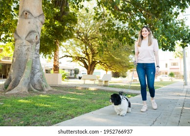 Happy dog owner walking her dog on a leash at the park. Beautiful woman smiling while going on a walk with her cute shih tzu puppy