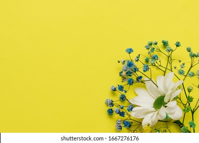 Happy Easter concept flat lay. Sprig of blue gypsophila (baby's breath flowers) with white chrysanthemums on the yellow background.Copy space for greeting text
