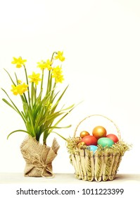 happy easter egg. holiday bunny and eggs, spring flower backround spring yellow narcissus flower traditional easter colorful painted eggs in basket isolated on white background, womens or mothers day,