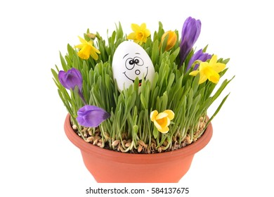 Happy easter egg in spring flowers. Home made easter decoration.
