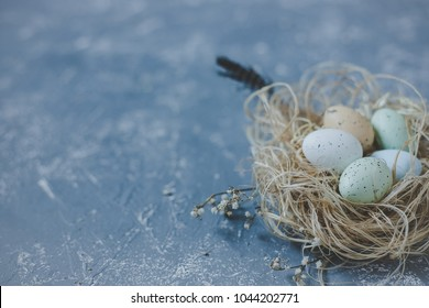 Happy easter. Easter eggs in nest with easter decoration, copy space. Selective focus