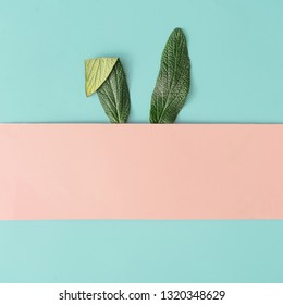 Happy Easter minimal concept. Bunny rabbit ears made of natural green leaves on pastel pink and blue background. Flat lay.