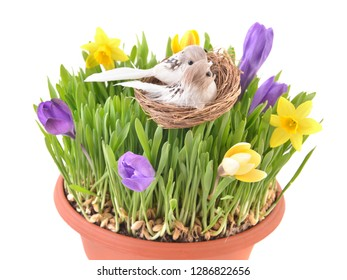 Happy Easter.  Easter nest,  eggs, grass and spring flowers.