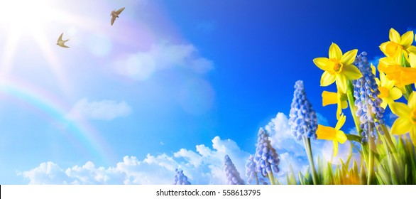 Happy Easter; Spring landscape background with fresh spring flowers.