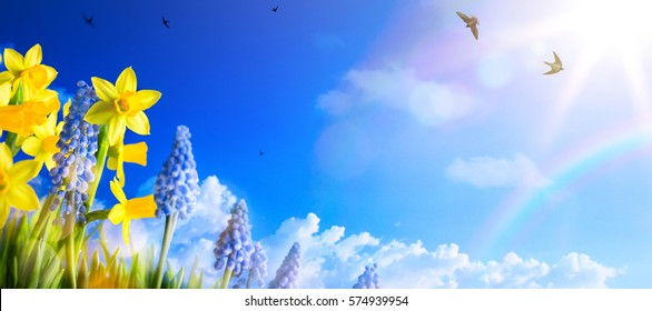Happy Easter; Spring landscape background with fresh spring flowers