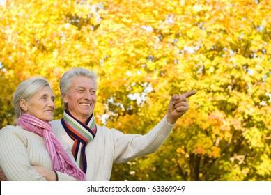 happy elderly couple in a autumn park